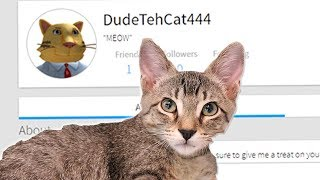 MAKING DUDE THE CAT HIS OWN ROBLOX ACCOUNT!!!