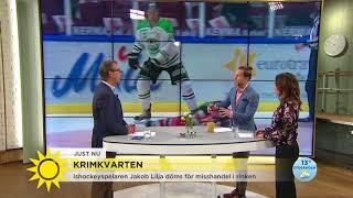 Hockeyspelaren dömdes för misshandel i rinken - Nyhetsmorgon (TV4)