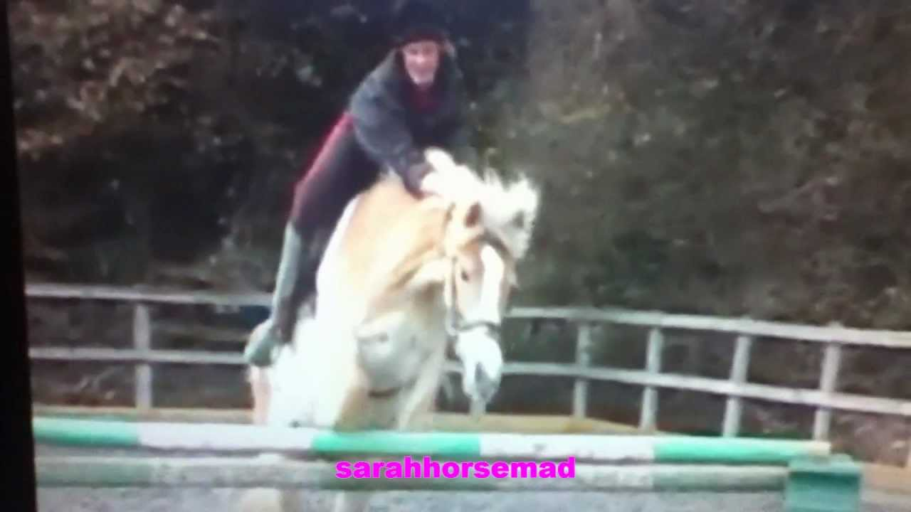 YouTube's BEST Horse Riding Bloopers