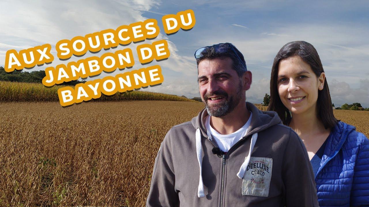 À la découverte de la culture du soja en France : les champs ! 9/9