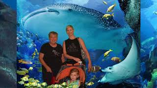 Georgia Aquarium With the Gallivanting Grandma June 2018