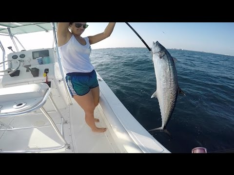 Offshore Fishing for Kingfish!! (Catch and Cook with Brook! #2)