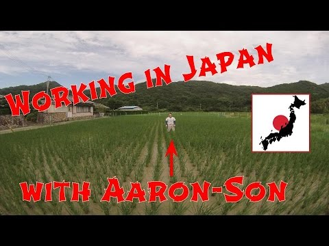Exploring the World: Working in Japan