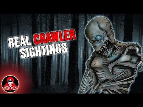 5 REAL Crawler Sightings!