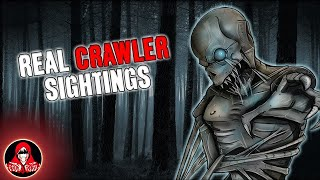 5 REAL Crawler Sightings! - Darkness Prevails