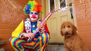 Funny Clown SURPRISES Puppy With Silly Treats!