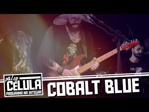 """Cobalt Blue """"Palco Célula"""" - Programa na Íntegra"""