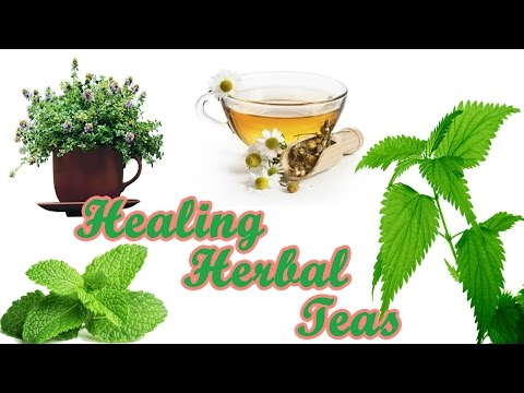 Healing Herbal Teas - Drink Food Benefits For Health