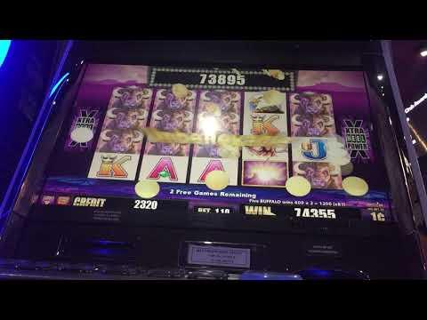 "Buffalo xtra reel""JACKPOT HANDPAY Big WIN""at Fallsview Casino"