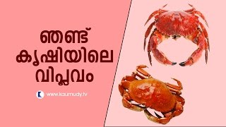 Haritham Sundaram 03/06/15