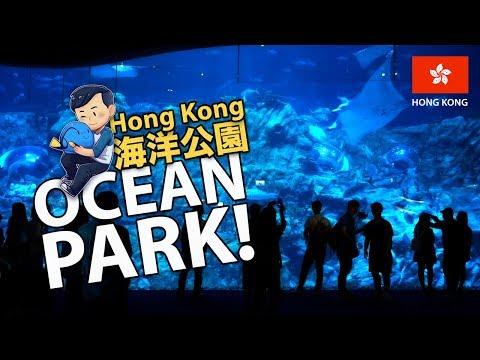Visiting Aquariums of OCEAN PARK Hong Kong!! (海洋公園)