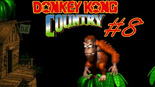 Donkey Kong Country - Partie 8 : Ourang-saoulant