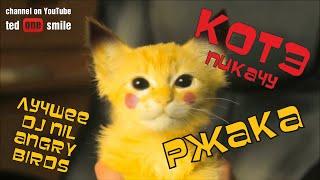 САМЫЕ ЛУЧШИЕ ПРИКОЛЫ С КОТАМИ 2016 [POKEMON GO] [КОТ PIKACHU] Лучшие приколы с котами и кошками