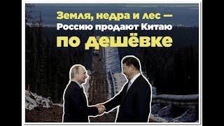 Путин отдал Китаю 337 квадратных километров России