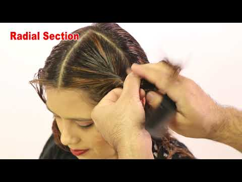 Sections for Haircuts & Head Shape Name Hair Tutorial Sam and Jas
