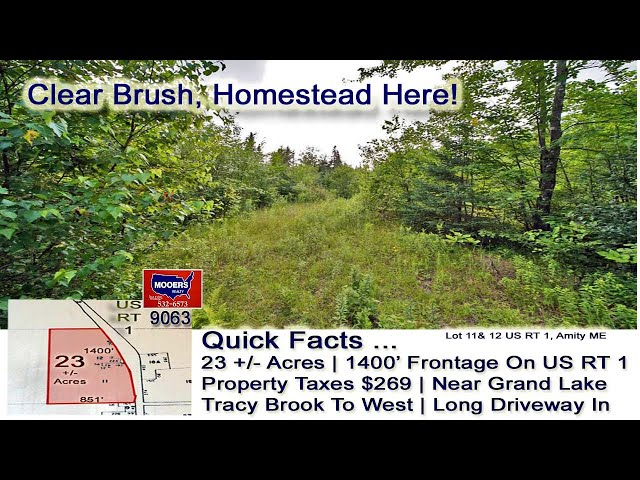 Land In Maine For Sale  23 Acres, Amity ME Video MOOERS REALTY 9063