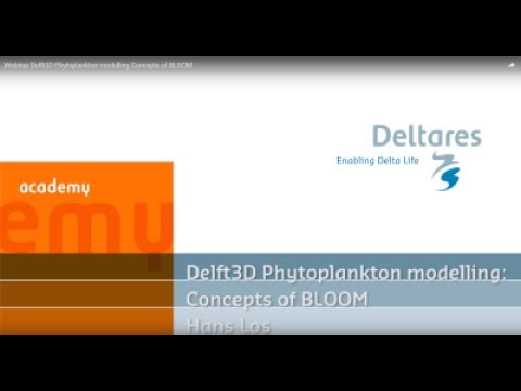 Webinar Delft3D Phytoplankton modelling   Concepts of BLOOM