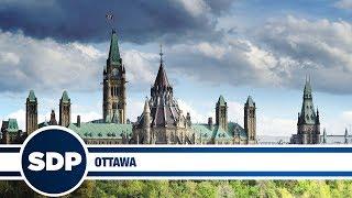 Ottawa | The Steve Dangle Podcast