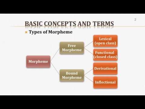 Introduction to Linguistics (II): Morphology 1