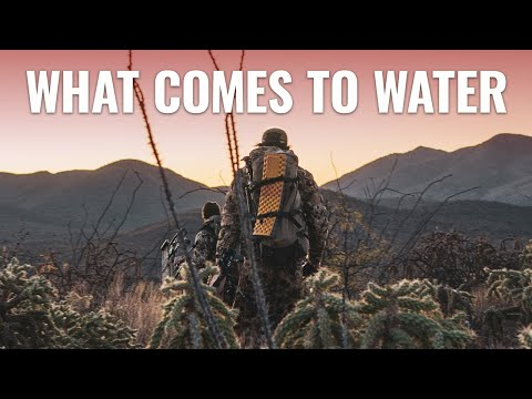 goHUNT Original: An Arizona OTC Archery Coues Deer Hunt | WHAT COMES TO WATER