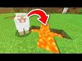 COMO DEIXAR O LICK FELIZ !?! - A PROCURA DO LICK #55 (Minecraft PE)