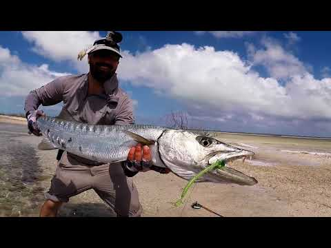 Bahama Bonefish Trip Feb 2018