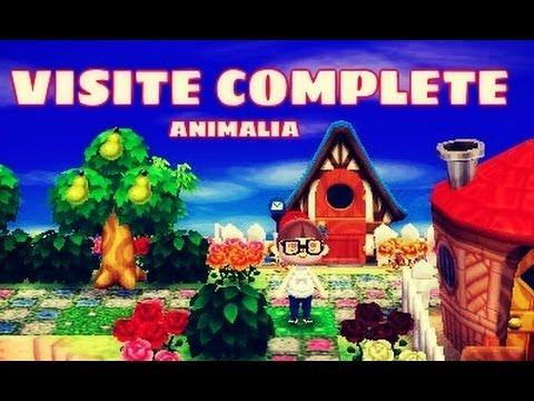Animal Crossing Visite De Ville Hacker