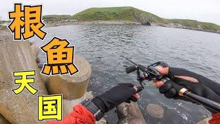 【北海道釣り旅】根魚天国で穴釣りしたら何が釣れるか検証! #2