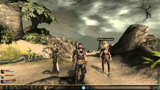 Dragon Age 2: Party Banter on Fenris & Hawke romance [complete]
