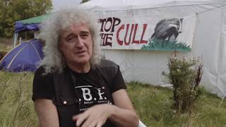 Brian May at Camp Badger Thumbnail
