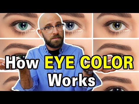 How Do Blue And Green Eyes Exist When Those Pigments Are Not Found In The Human Eye?