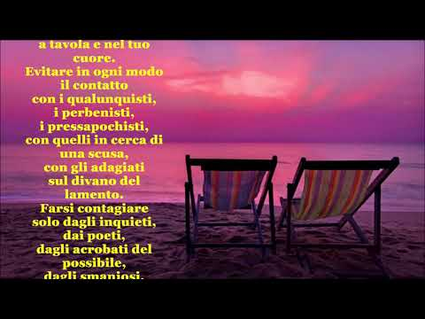 REGOLE PREVENTIVE PER NON AMMALARSI - di Manuela Toto (erroneamente attribuita a Wyslawa Szymborska)