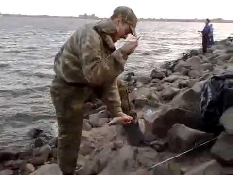 Богатая цыганская свадьба в Ростове. 1 серия - YouTube