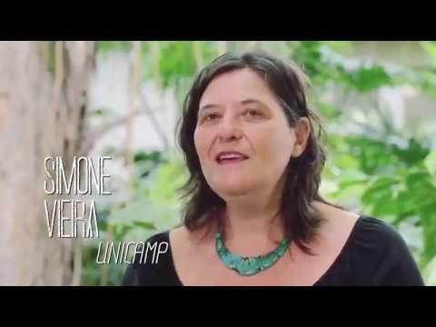Documentário Amazônia Climática  a floresta de hoje e do amanhã