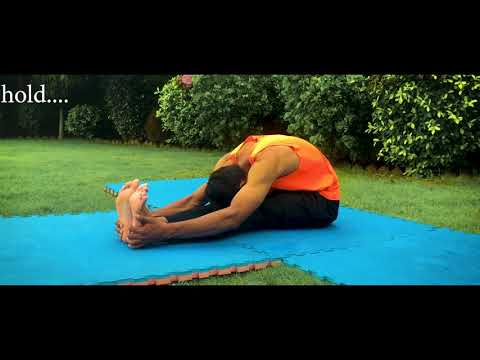 beginner's stretching routine with reshu  dance