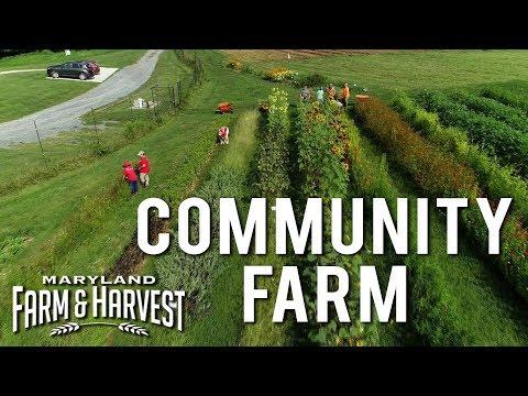 A Community Farm Makes a Difference | Maryland Farm & Harvest