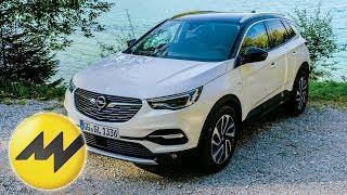 Ein Offroad-inspirierter Look mit erschwinglichen Unterhaltskosten | Opel Grandland X | Motorvision