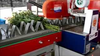 BTM Flower Processing Machine
