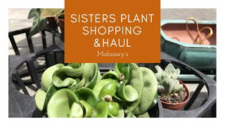 Sisters Plant Shopping / Plant Haul (Part 1) & Frizzle Sizzle Repotting