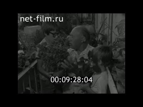 1981г. Астрахань. Николай Богомолов. розы