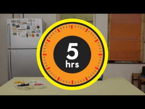 How to use PronGO™  - (3Ltr capacity, Frozen food product carrier upto 5 hours)