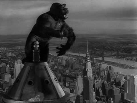 Everything About King Kong