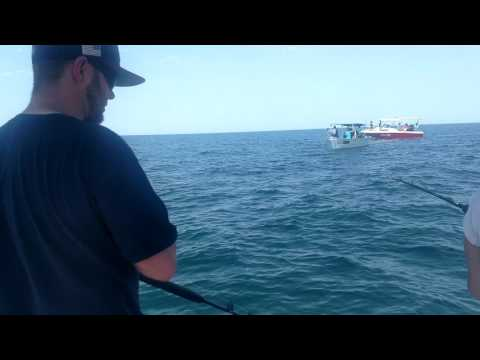 Rocky point fishing from YouTube · High Definition · Duration:  1 minutes 41 seconds  · 83 views · uploaded on 08.07.2017 · uploaded by Fuzzy's Outdoor Adventures