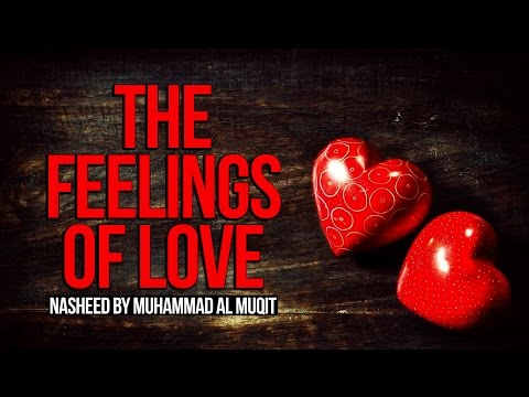 The Feelings of Love - Muhammad al-Muqit