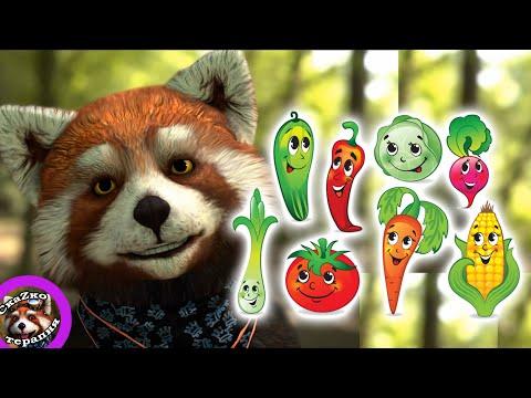 Сказка Полезные овощи. Если ребенок не ест полезную еду.