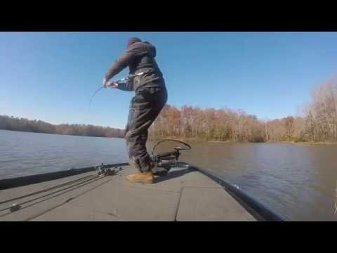 Lake Chesdin Busting Bass