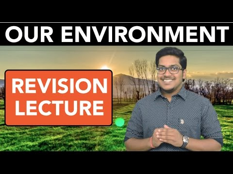 Natural Resources: Our Environment (Revision)