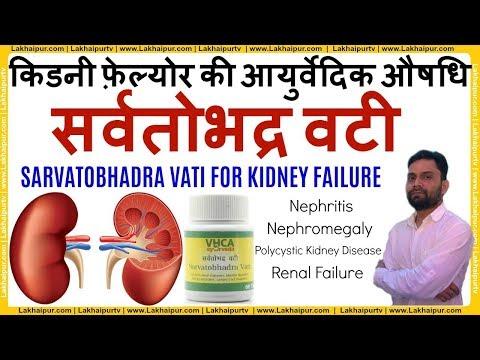 Herbal Medicine for Kidney Failure   Kidney Disease