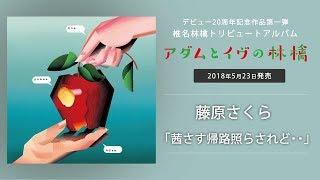 2018年5月23日発売 椎名林檎トリビュートアルバム『アダムとイヴの林檎...