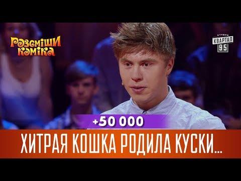 +50 000 - Хитрая кошка родила куски пенопласта
